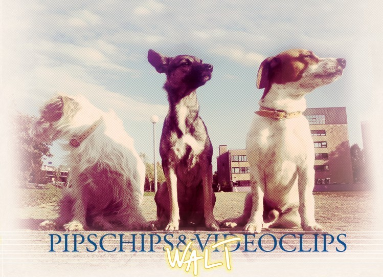 Pips Chips & Videoclips - Walt