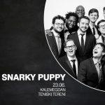 Snarky Puppy, višestruki dobitnici Gremija, dolaze u Srbiju